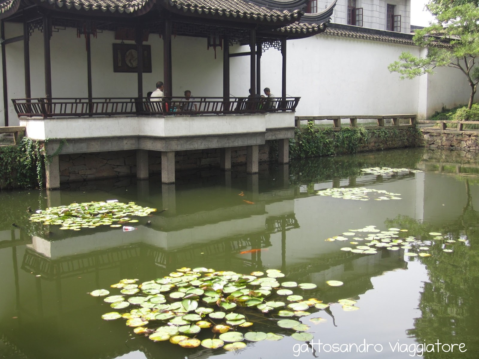Gattosandro viaggiatore travel blog i giardini di suzhou - Giardini particolari ...