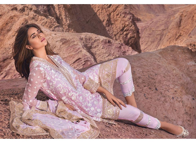Shariq-textiles-mina-hasan-embroidered-fabric-luxury-chiffon-dresses-2016-17-collection-13