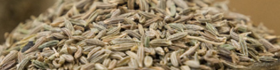 Cumin Seeds / Jeera Keeps Blood Pressure Normal