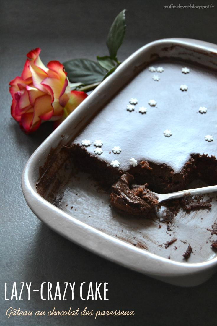 Ma Nouvelle Vie En Picardie Flemmignardise Recette Gateau Au Chocolat Vegan Df Sans