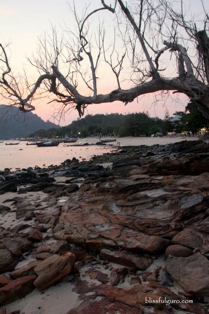 Phi Phi Bayview Resort Koh Phi Phi