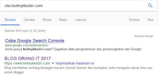 Site cek jumlah index situs