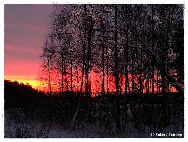 Talvi-illan ihanuutta