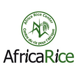 Africa Rice Center Masters and PhD Scholarships for African Students 2018