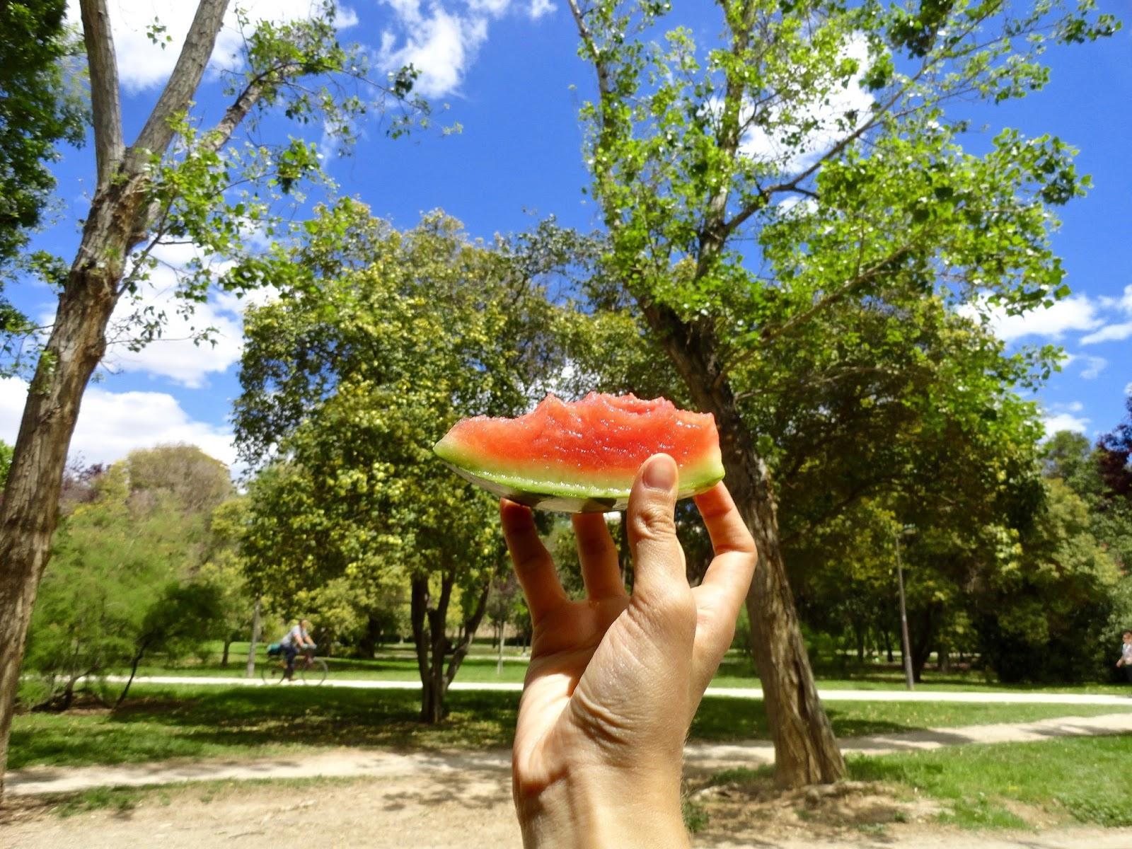 turia gardens valencia spain trees green watermelon