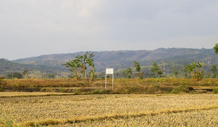 Plang PT KAI di Tengah Sawah