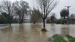 Christchurch declared a state of emergency