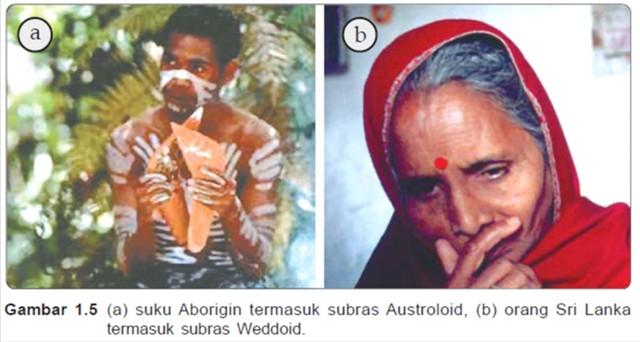 Hasil gambar untuk Pengertian Diferensiasi Ras (Racial Differentiation)
