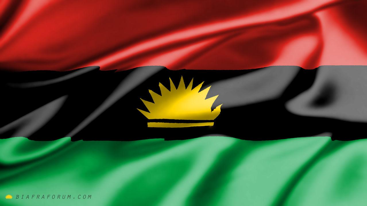 Image result for biafra flag