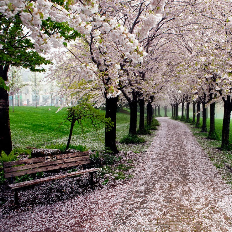 3. Spencer Smith Park, Burlington, Ontario, Canada - 29 Wonderful Paths