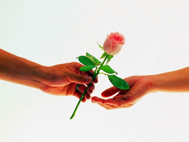 Happy Rose Day SMS for Girlfriend - Boyfriend - Friend