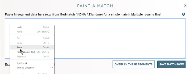 Paste data in DNA Painter