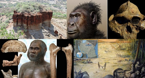Olduvai Gorge : Neden Tarihi Yeniden Yazdı?