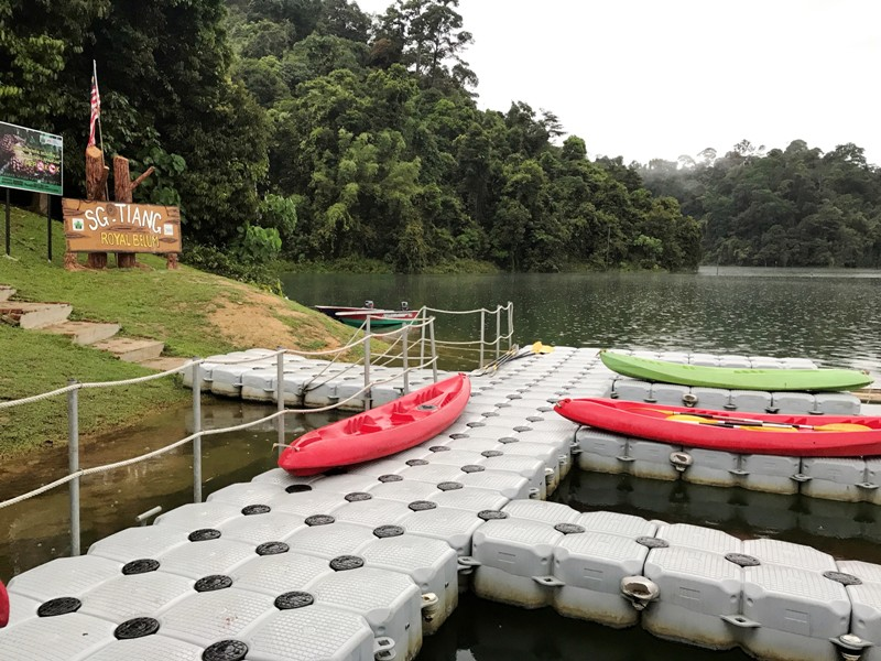 royal belum sungai tiang campsite activities kayaking