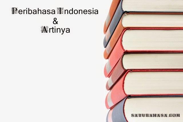 peribahasa indonesia beserta artinya
