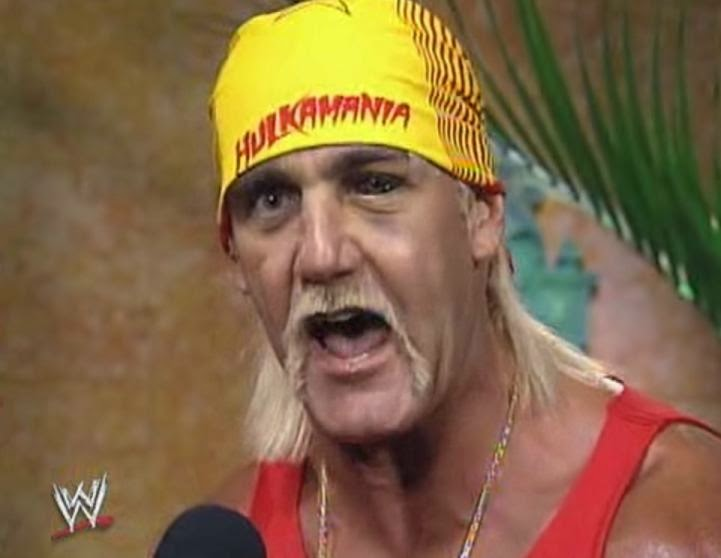 WWE / WWF WRESTLEMANIA 9: Hulk Hogan challenges the winner between Bret 'Hitman' Hart and Yokozuna
