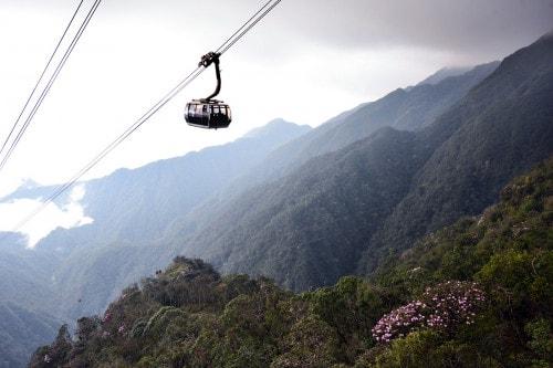 Thiên đường đỗ quyên Fansipan hấp dẫn khách du lịch quốc tế - Ảnh 8