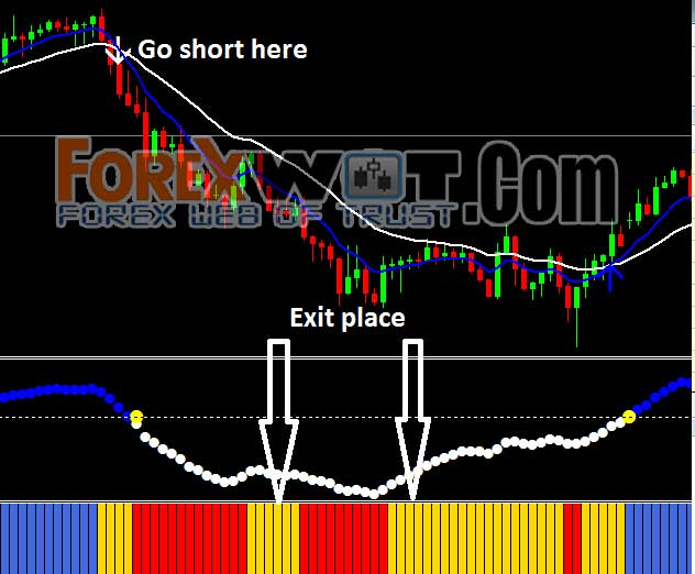 Download wss forex