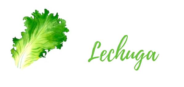 lechuga, alimentos para eliminar liquido, contra la retencion de liquido
