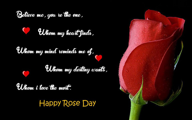 Happy Rose Day Shayari in English