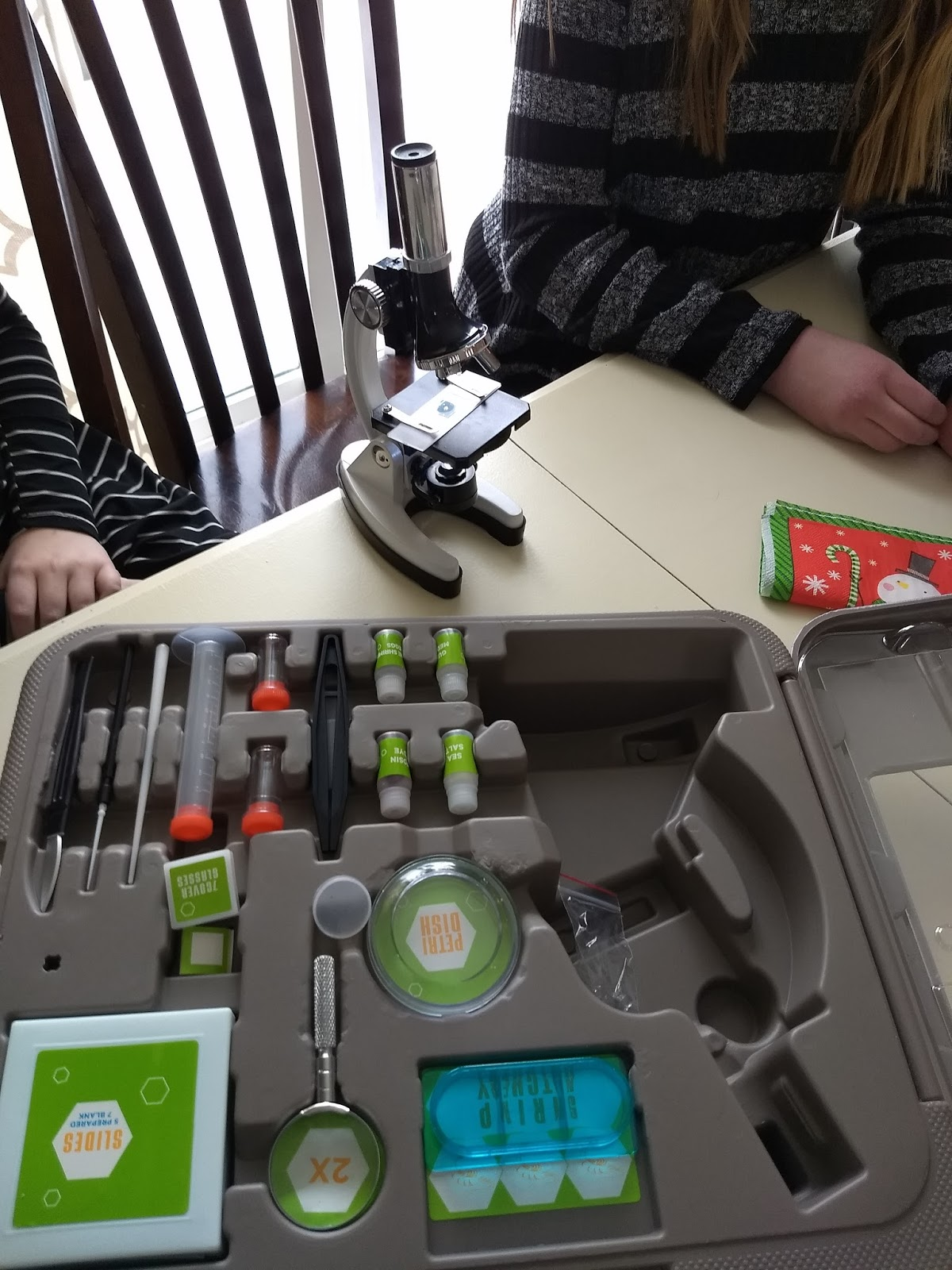 the cool science dad science gift idea for kids a microscope