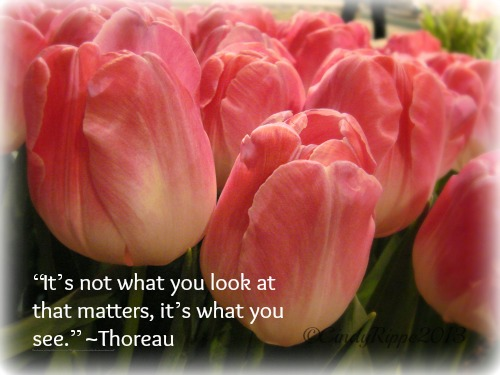 Pink Tulips, Thoreau quote, Spring Flowers, Chicago Flower and Garden Show, Florals-Family-Faith, Cindy Rippe