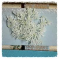 http://www.foamiran.pl/pl/p/srodki-do-kwiatow-biale-/808