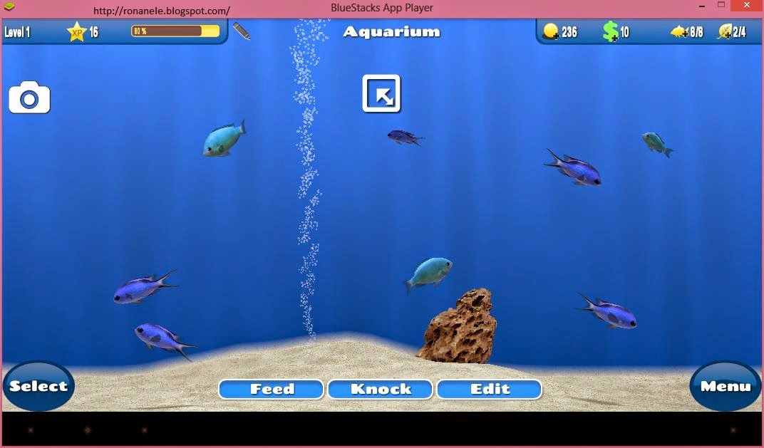 Bluestacks hd appplayer pro free download.
