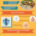 Facts to Know about Camel Spider