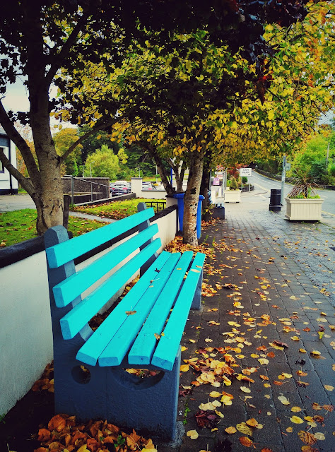 bench, road, autumn, Oughterard, Galway