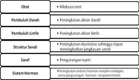 Efek Fisiologis Massase