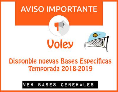 Ver Voley Bases Especificas
