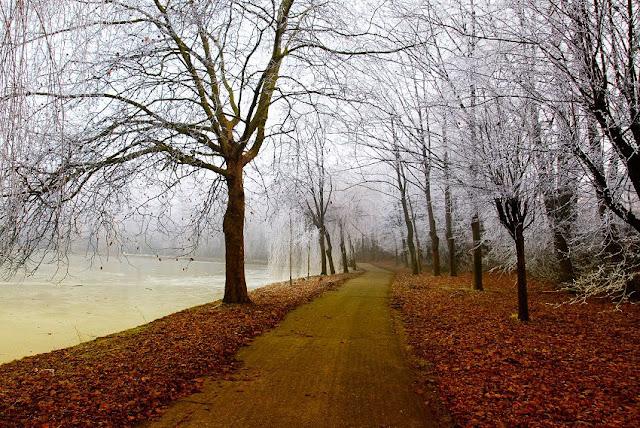 Der gnadenlose November, herbst, spätherbst, wetter, natur, see, park, weg, bäume, zweige, frostige küsse, rostbraune blätter, kalte erde, verfall, winterschlaf, texte schreiben, jahreszeiten poesie, blog, poetisch, lyrik, bild, foto