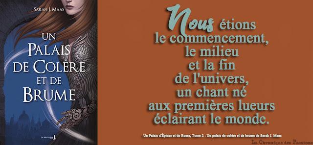 http://www.lachroniquedespassions.com/2018/06/un-palais-depines-et-de-roses-tome-2-un.html
