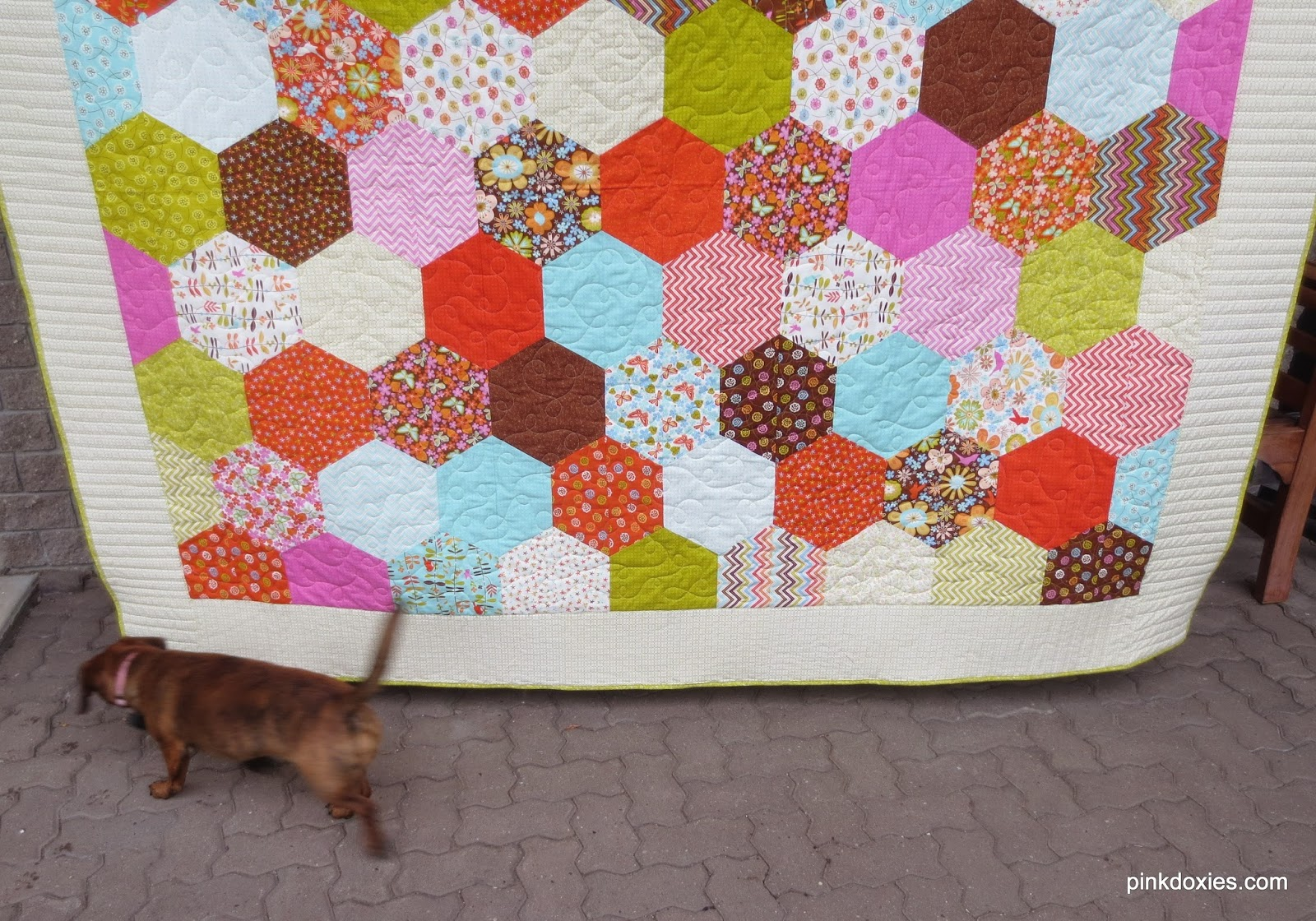 Julie Stocker Quilts At Pink Doxies Wrens Friends Quilt Finish Taking Perfect Pictures