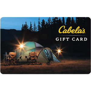 eBay Gift Card: $100 The Children's Place GC For Only $85, $100 Cabelas GC for $85