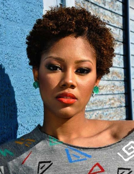 10 Short Natural Hairstyle Ideas For The Summer The Curl Endowed