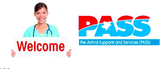 Pre-Arrival Support Services for Internationally Educated Nurses (IENs) - PASS for Nurses