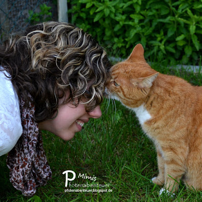 Katze Mimi gibt ihrer Zweibeinerin Betty ein Küsschen auf die Stirn