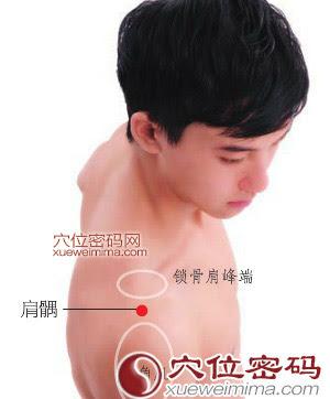 肩髃穴位 | 肩髃穴痛位置 - 穴道按摩經絡圖解 | Source:xueweitu.iiyun.com