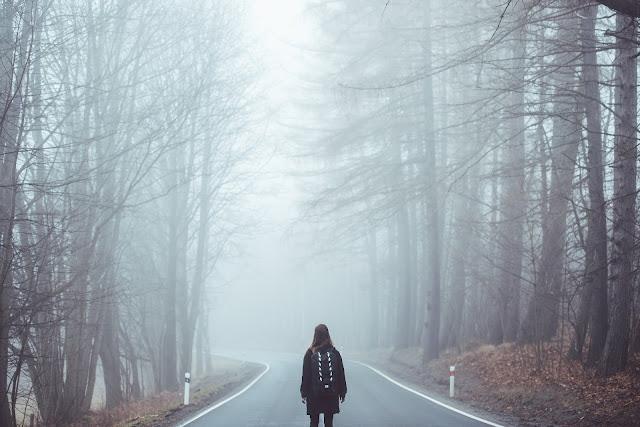 https://pixabay.com/pt/nevoeiro-n%C3%A9voa-estrada-perdeu-1208283/
