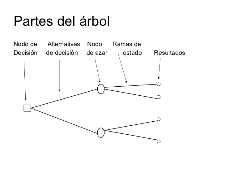 Herramientas para la toma de decisiones equipo 2 rbol for Cuales son las partes de un arbol