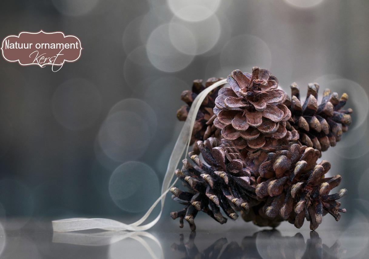Natuur ornament voor Kerst - Diy