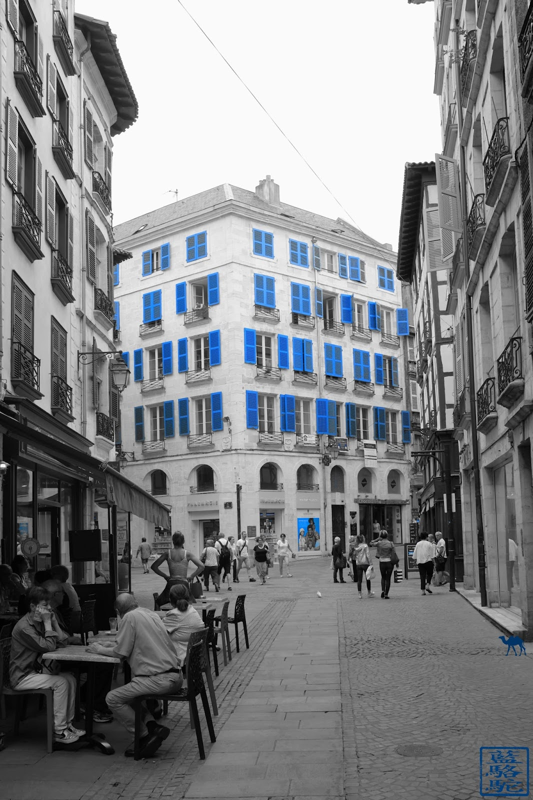 Le Chameau Bleu - Blog Voyage Bayonne France - Bayonne et sa baisse aux volets bleus
