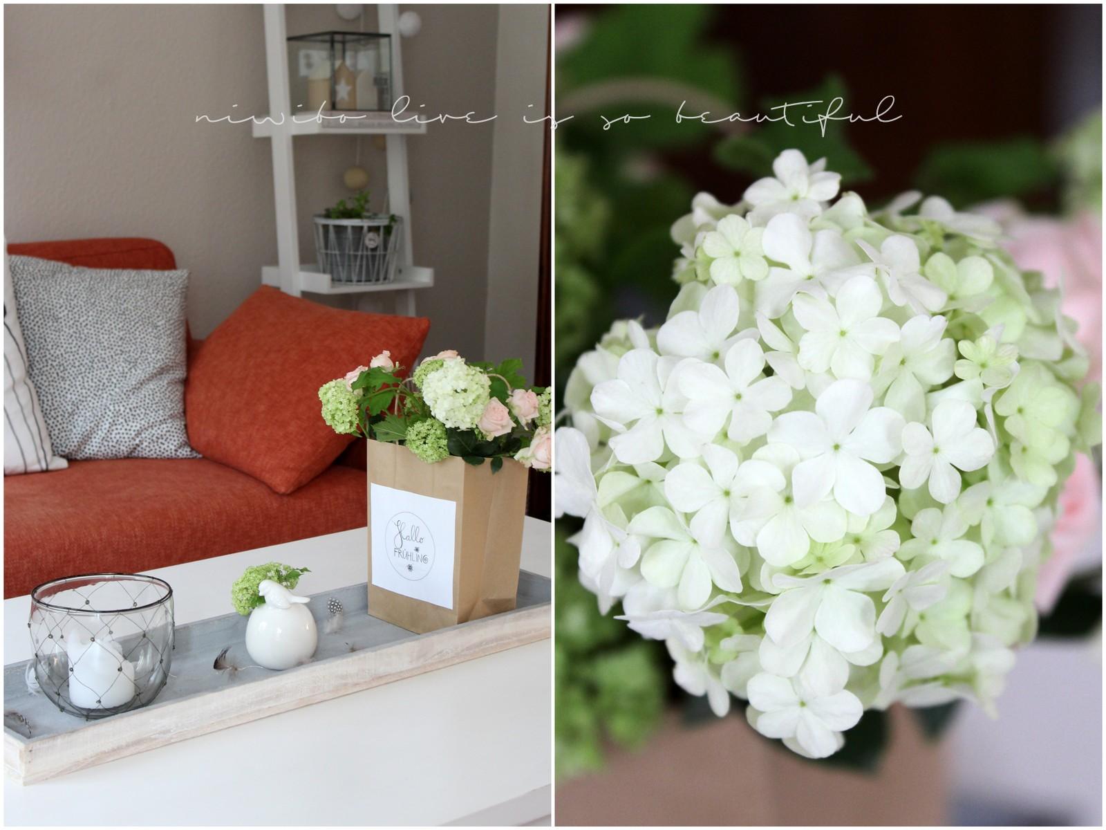 niwibo life is so beautiful. Black Bedroom Furniture Sets. Home Design Ideas