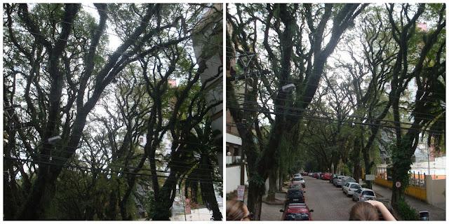 Rua Gonçalo de Carvalho, Porto Alegre