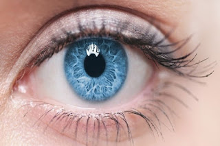 İnsan Gözünün Özellikleri