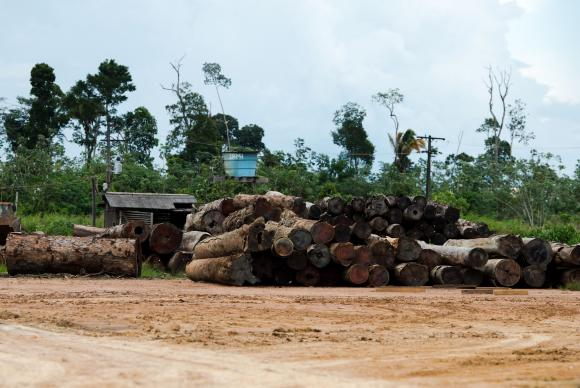 Image Attribute:  The economic crisis has affected all wood forest products based on extractives in 2015.Marcelo Camargo/Agência Brasil