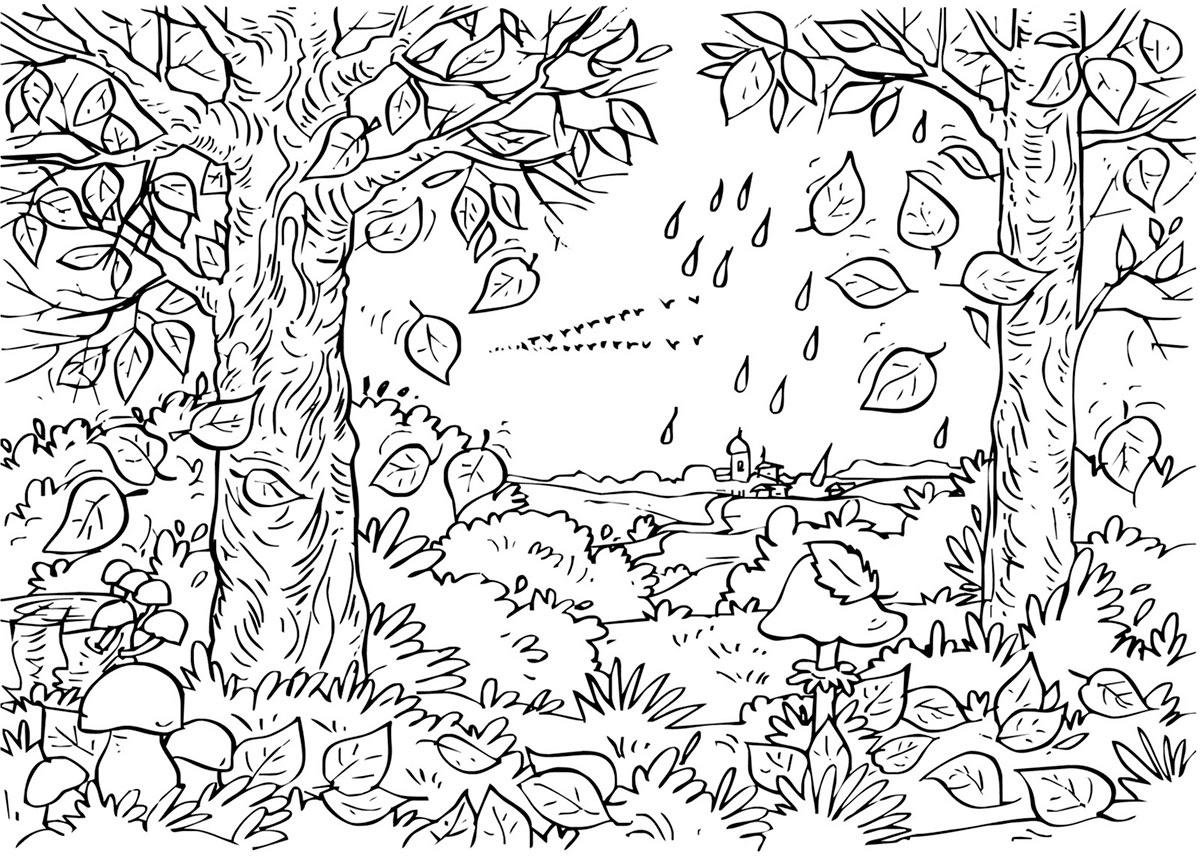 Gambar Mewarnai Pemandangan Hutan 2