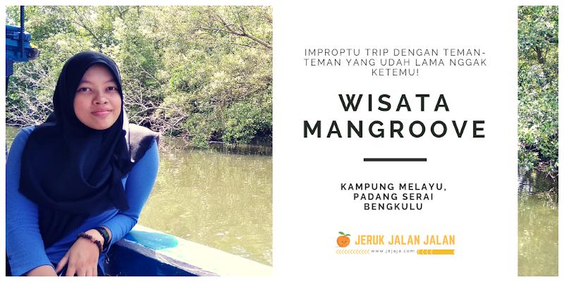 Wisata Mangroove Bengkulu | Tempat Yang Cocok Buat Rekreasi, Narsis dan Relaksasi